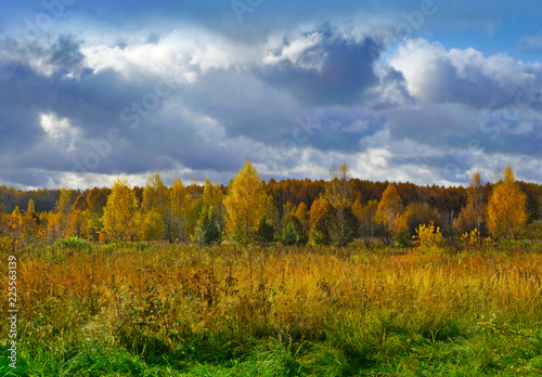 Autumnal nature, scenery - 225563139