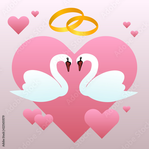 White swans and wedding rings and hearts vector illustration