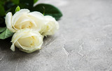 White roses on a stone background