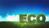 ECO sign on green field - 225662525