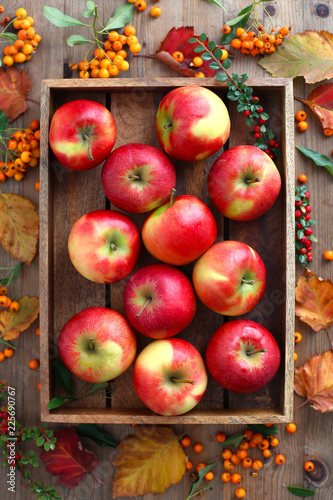 Red apples in wooden box - 225690767