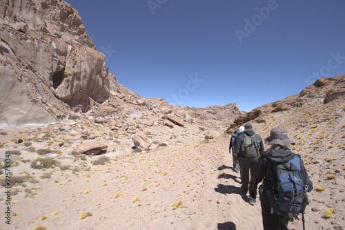 Trekking Gato Andino