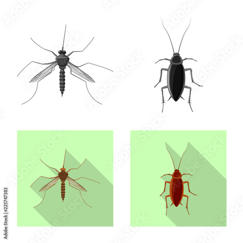 Isolated object of insect and fly icon. Collection of insect and element stock symbol for web. - 225747383