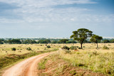 Paesaggio Murchison Falls National Park, Uganda, Africa