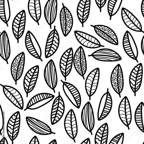 Fototapeta Painted leaves. Black outline.