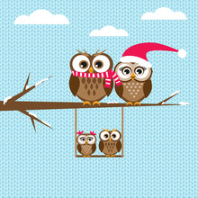 Cute Owls Christmas Seasonal Illustration Sticker
