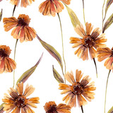 Watercolor chamomile flowers, leaves background. - 225870527
