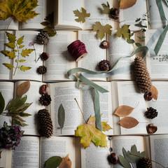 Kreatives Herbstdurcheinander