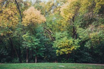 Autumn landscape in the park.