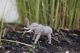 Elephant in a grass landscape