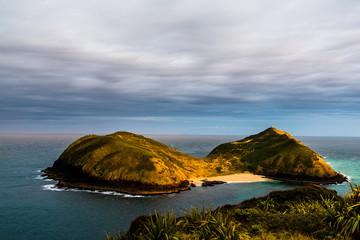 Sunset on the west coast, cape maria van deimen, northland © rodcoffeehill