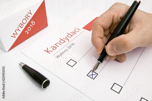 Wybory samorządowe 2018 - 225933353