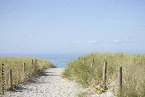 Foto Murales Düne an der Ostsee