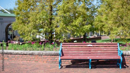 公園のベンチ - 225987978