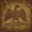 Logo of the Roman eagle on an old shabby texture.