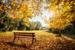 Leinwandbild Motiv Goldener Herbst im Park auf einer Parkbank