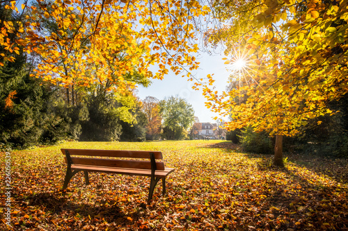 Leinwanddruck Bild Goldener Herbst im Park auf einer Parkbank