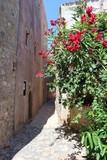 Flowers on the wall, narrow street in medieval Monemvasia, Peloponnese, Greece