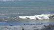 Unidentified surfers at Ano Nuevo State Park, Santa Cruz County, California, USA, 2018