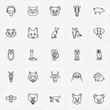 Animals line icon set with owl, horse and bull