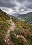 Landscape image of view from Precipice Walk in Snowdonia overlooking Barmouth and Coed-y-Brenin forest during rainy afternoon in September - 226171334