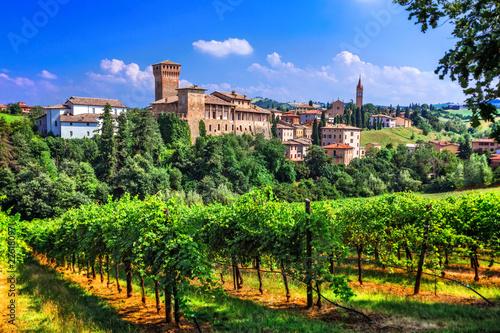 Leinwandbild Motiv Romantic vine route with medieval castles in Italy. Emiglia Romagna region, Levizzano village