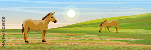 Two brown horses graze in a meadow. Hills covered with grass. Vector landscape - 226183723