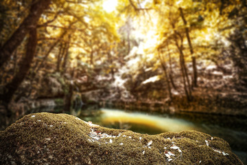 Autumn time background of free space for your decoration