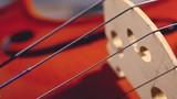 Música clásica y violín.Plano detalle de violín sobre fondo blanco.Cultura musical,arte y entretenimiento. - 226216957