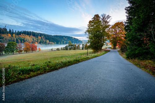 Straße mit Nebel in Landschaft im Herbst