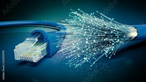 Leinwandbild Motiv Netzwerkkabel und optisches Glasfaser Kabel, 3D Rendering