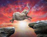 African Elephant jumping over a gap. Successful business metaphor and jump to new year concept. - 226320141