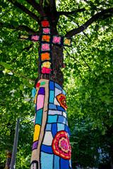 Yarnbombing sur des arbres à Clermond Ferrand