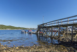 Jetty in ebb tide in a fjord in Norway with boats in background - 226323132