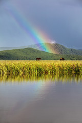 The pastoral scene under the rainbow
