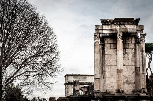 Mała kolumnada dalej z dużym starym drzewem na lewym i białym niebie na tle