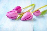 Pink Tulips. Flower background. Wooden background. Close up. Copy space. - 226350121