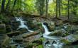 Selkewasserfall, Harz - 226379926