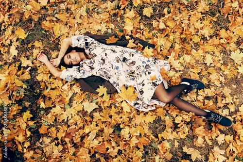 Leinwanddruck Bild golden autumn leaves