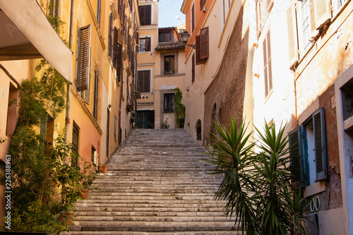 Typical vintage Italian street with ivy plant hanging off the walls and staircase.