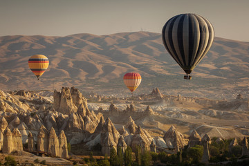 Beautiful landscape of Cappadocia valley with hot air balloons in background at sunrise