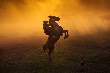 Cowboy puting his horse to stay in two feets at sunset with dust in background