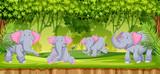 Elephants in the jungle scene