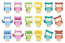 Cute Owl Funny Cartoon   Set  Sticker