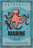 Marine adventure ocean octopus, vector