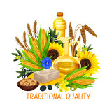 Vegetable seed and nut cooking salad oils, vector