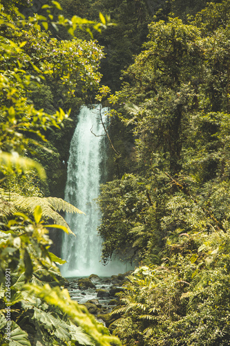 Waterfall Rainforest Costa Rica - 226456921