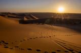 Omani Desert - 226511158