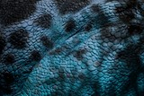 Detail of blue skin of reptile.Blue scaly leather with black maps.
