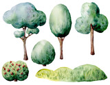 Watercolor green trees and bushes set. Hand painted natural elements isolated on white background. Forest illustration for design, print. - 226564973
